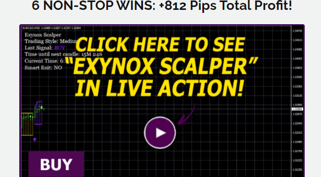 Exynox Scalper Review – Amazing Forex Indicator!!